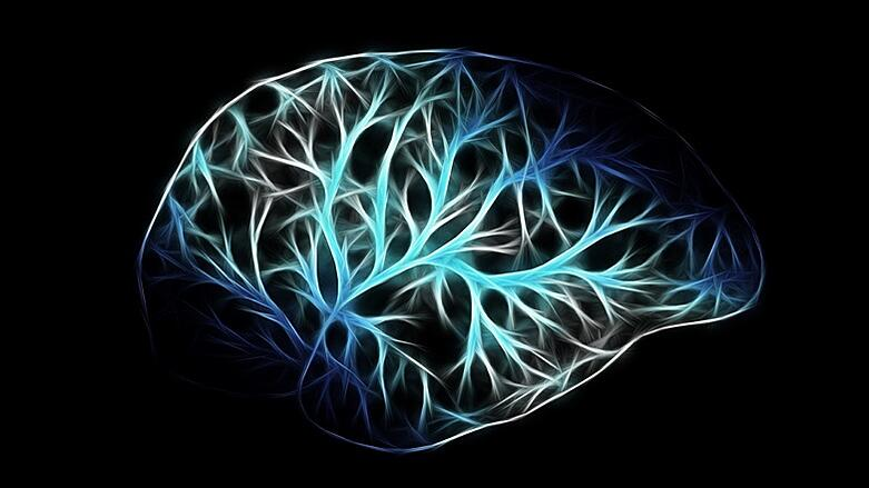 Stylized Brain with Synapses Lit